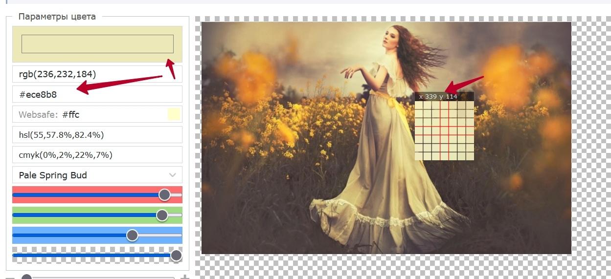 Код цвета по картинке онлайн